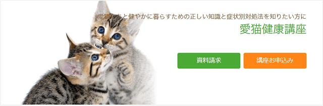 たのまなの愛猫健康通信講座ページ